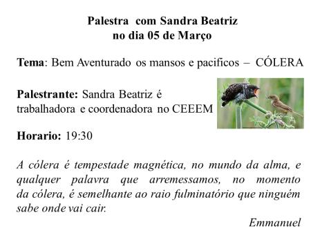 palestra 05-03-14