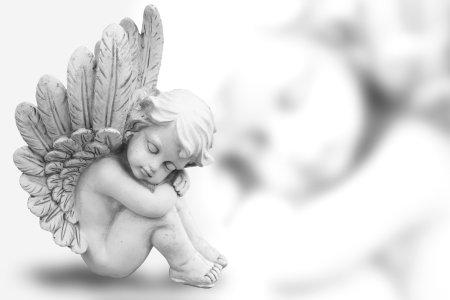1-anjos